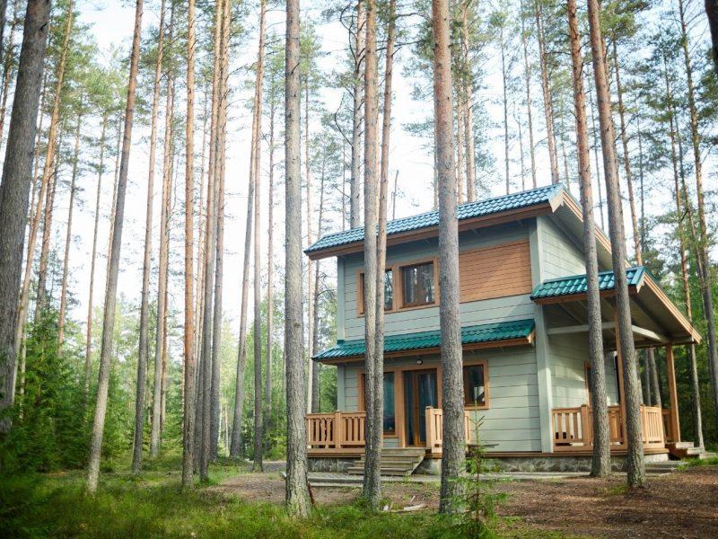 5 unschlagbare Argumente für Immobilien im Grünen