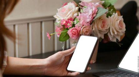 Wie Sie Ihre Firmen Telefonie professionell ins Homeoffice übertragen